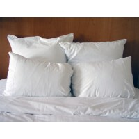 Egypt Cotton King Size Pillowcase